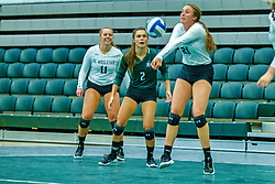 BLOOMINGTON, IL - August 24: Katherine Petty during  the IWU Titans Women<br /> s Volleyball Green-White scrimmage on August 24 2019 at Shirk Center in Bloomington, IL. (Photo by Alan Look)