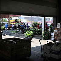 Shoppers browse plants and produce at Eastern Market in Detroit, Michigan. Melanie Maxwell..