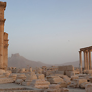 Palmyra: ancient jewel of the Syrian desert