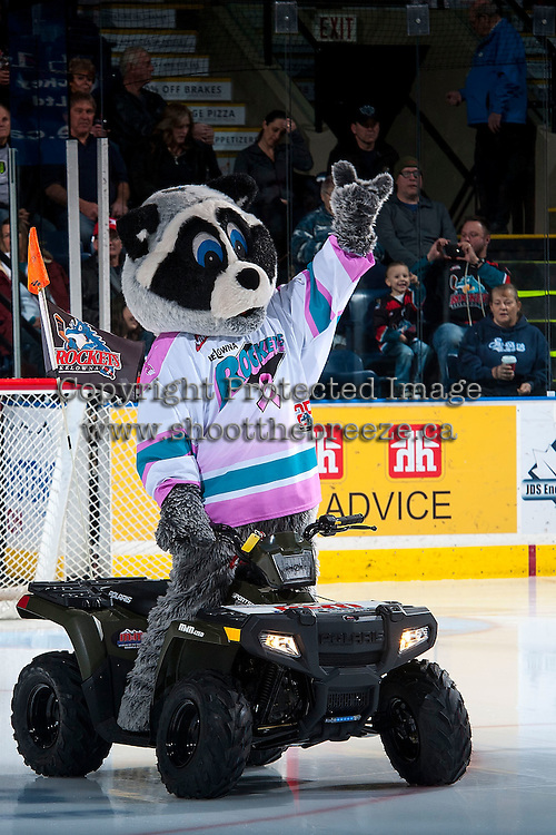 KELOWNA, CANADA - JANUARY 29: Rocky Raccoon, the mascot of the Kelowna Rockets on January 29, 2016 at Prospera Place in Kelowna, British Columbia, Canada.  (Photo by Marissa Baecker/Shoot the Breeze)  *** Local Caption *** Rocky;