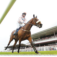 27 July 2005; Ansar, with Denis O'Regan up, crosses the finish line to win the Hewlett-Packard Galway Plate. Galway Races, Ballybrit, Co. Galway. Picture credit; Pat Murphy / SPORTSFILE