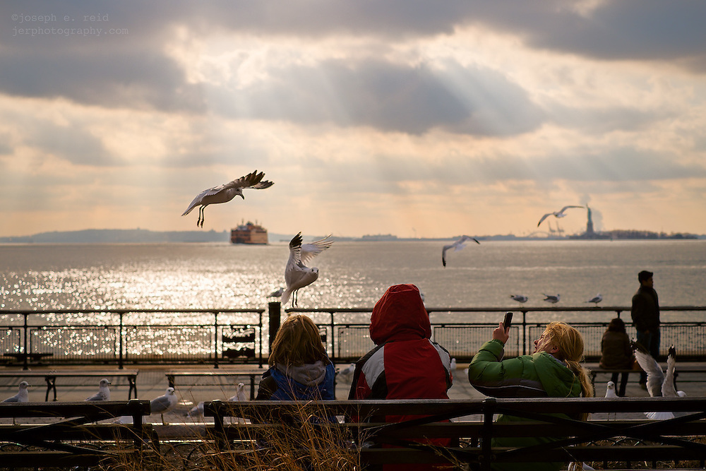 Seagulls flying around children on bench