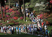 Dustin Johnson (left) & Rickie Fowler walk to the 6th green during the second day of practice rounds for the Masters Tournament at Augusta National Golf Club