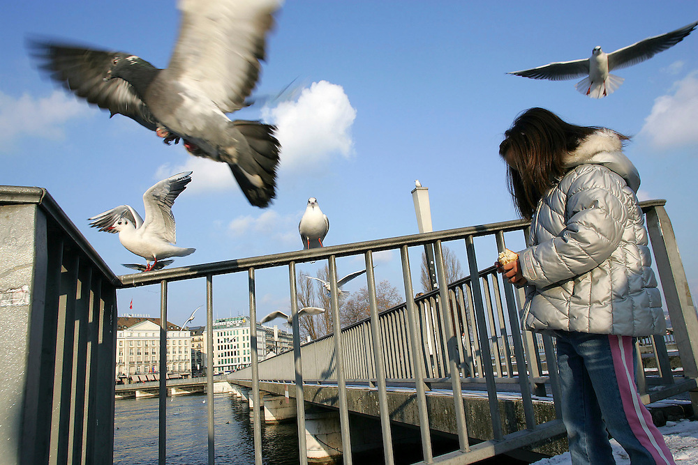 A young girld feed seagull at Place du Rhône.