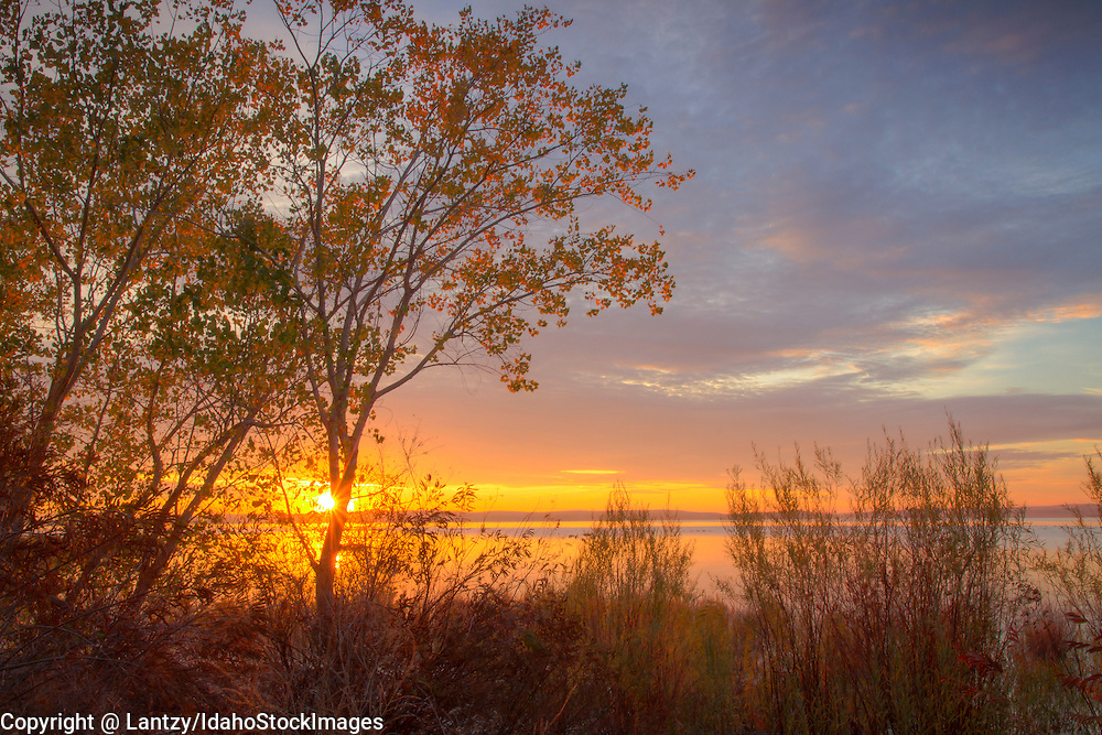 Idaho, Southwest, Boise, Sunrise on Lake Lowell.