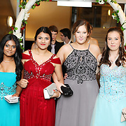 Avondale College Ball - Entrance