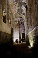 """Roma 1 Aprile 2015<br /> Presentato il progetto per il risanamento della Domus Aurea, realizzato dalla Soprintendenza speciale per i beni archeologici di Roma, che consiste nella sistemazione del  giardino pensile,una parcella di 800 mq ,realizzato con tecnologie sostenibili che farà da «scudo» alla  Domus Aurea impedendo le infiltrazioni d'acqua. L'interno della Domus Aurea. Il Grande Criptoportico.<br /> Rome, April 1, 2015<br /> Presented the project for the rehabilitation of the Domus Aurea, fulfilled  by the Superintendence for Cultural Heritage of Rome, which is the arrangement of the roof garden, a plot of 800 square meters, made with sustainable technologies that will be the """"shield"""" at the Domus Aurea for  preventing water infiltration. The interior of the Domus Aurea. The Great cryptoporticus."""