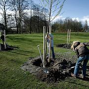 Nederland Rotterdam 19 maart 2008 20080319..Nieuwe aangeplante bomen in Rotterdam Schiebroek op de nationale boomfeestdag..Boomfeestdag: plant bomen in eigen land ter CO2-compensatie...Op de Boomfeestdag van aanstaande woensdag 19 maart zullen zoveel bomen geplant gaan worden, dat hiermee een substantiele bijdrage geleverd wordt aan een schoner klimaat in EIGEN land! Dit meldt Stichting Nationale Boomfeestdag, bij monde van directeur Peter Derksen. Uit de aanmeldingen blijkt dat in ruim 350 gemeenten naar verwachting 115.000 kinderen op de Boomfeestdag zeker 230.000 bomen planten. Dit is meer dan andere jaren en is een duidelijke bevestiging dat bomen planten 'hot' is. Het levert een bijdrage aan de CO2 reductie van ruim 275.000 kg, aldus Peter Derksen. Stichting Nationale Boomfeestdag schat dat er sinds de start van de Boomfeestdag in 1957 zeker 10 miljoen bomen zijn geplant. Berekend is dat hiermee ongeveer 120 miljoen kilogram CO2 is opgenomen. De organisatie vindt dat er meer aandacht moet worden besteed aan schonere lucht in eigen land en roept gemeenten en bedrijven op om veel meer bomen in eigen land te planten ter CO2-compensatie en niet alleen in landen als bijvoorbeeld Oeganda...De aftrap van de 52-ste Boomfeestdag vindt plaats in Rotterdam waar de Nationale Viering wordt gehouden met 2008 kinderen. Eregasten zijn minister Gerda Verburg, burgemeester Ivo Opstelten, Gevolmachtigd Minister Paul Comenencia van de Nederlandse Antillen, Sparta-trainer Foeke Booy, Feyenoordspeler Theo Lucius, Charlene van Idols en Characters uit VAREKAI van Cirque du Soleil. Het programma wordt gepresenteerd door ambassadrice Sandra Reemer en door Jochem van Gelder. ..Accentlocatie is Park Zestienhoven waar 900 kinderen op het dak van de Hoge Snelheidslijn een start maken met het planten van ruim 300 van de 900 te planten bomen. De ruim 2000 kinderen zullen die dag op diverse locaties in Rotterdam 2008 bomen planten. De gemeente Rotterdam en de organisatie wil door middel va