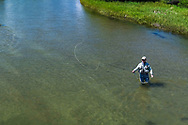 Fly-fisherman Roger Johannigman casting a tight loop on the East Rosbud River in Southwest Montana.