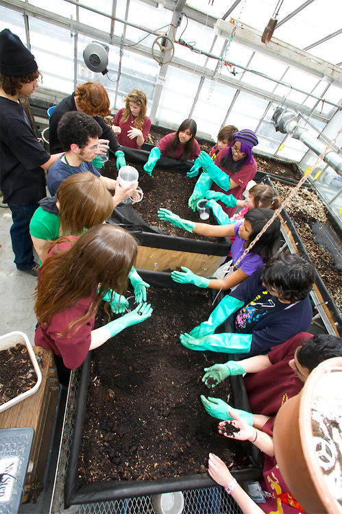 Youth Fusion accompanies James Lyng High School Students to Concordia Greenhouse and The People's Potatoe