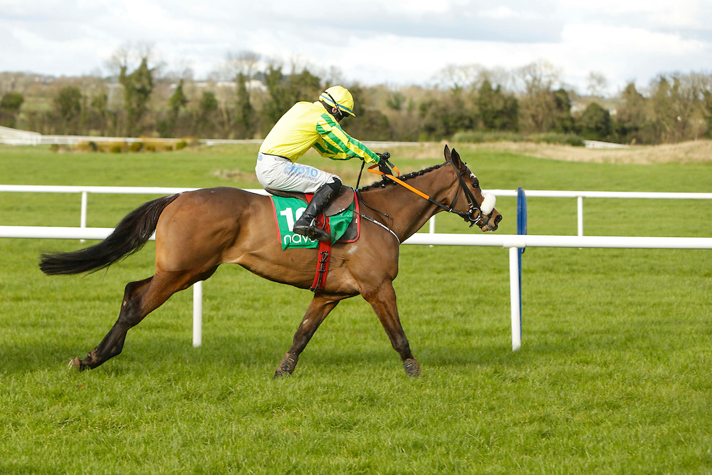 Ladbrokes Ireland Boyne Hurdle at Navan Race Course, 14th February 2016<br /> Gordon Elliott trained Automated with Jack Kennedy in the saddle on his way to win the Get Your 2016 Navan Membership Maiden Hurdle<br /> Photo: David Mullen / www.quirke.ie ©John Quirke Photography, Unit 17, Blackcastle Shopping Cte. Navan. Co. Meath. 046-9079044 / 087-2579454.
