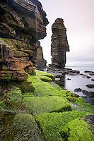 Sea Stack, Schottland