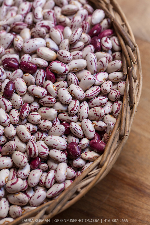 Dried, heirloom 'Romano' beans
