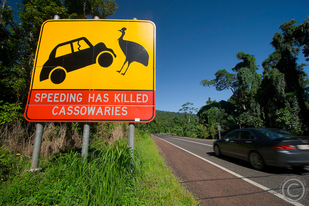 A sign warning motorists to be careful of the endangered cassowary when driving on Mission Beach roads, far north Queensland, Australia.