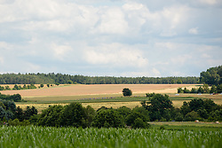 Peloton carve through the countryside at Thüringen Rundfarht 2016 - Stage 5 a 99km road race starting and finishing in Greiz, Germany on 19th July 2016.
