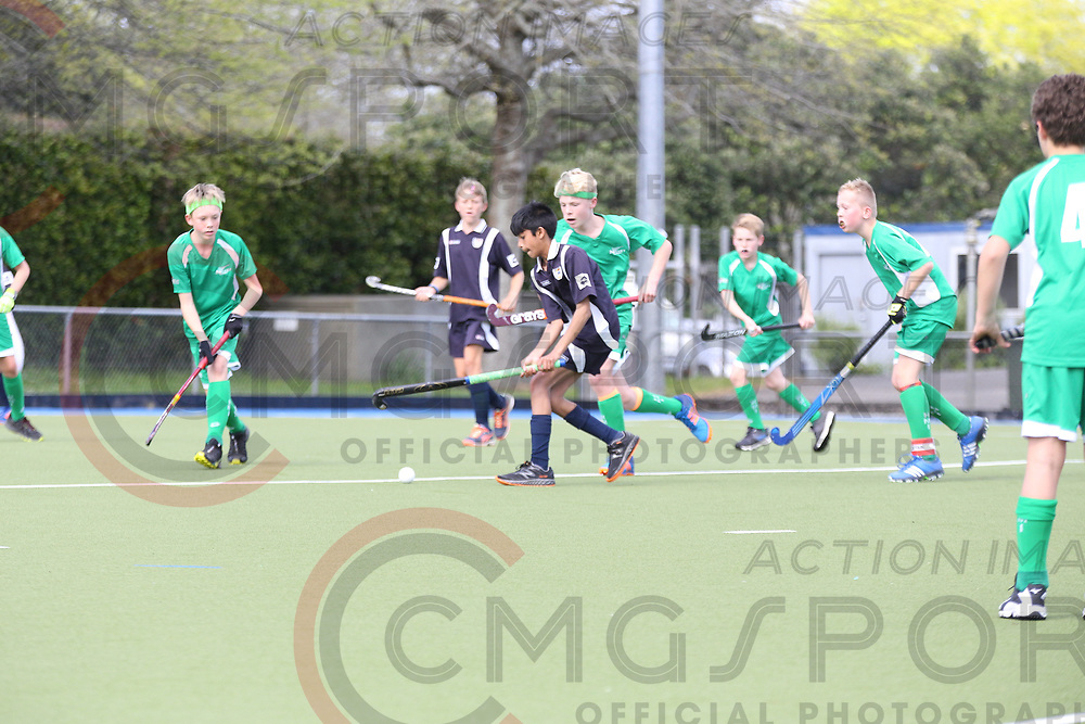 HATCH CUP 2017 DAY 4<br /> AUCKLAND B V MANAWATU<br /> <br /> Photo Chris Clarke CMGSPORT<br /> &copy;cmgsport2017