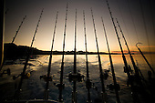 fishing rincon