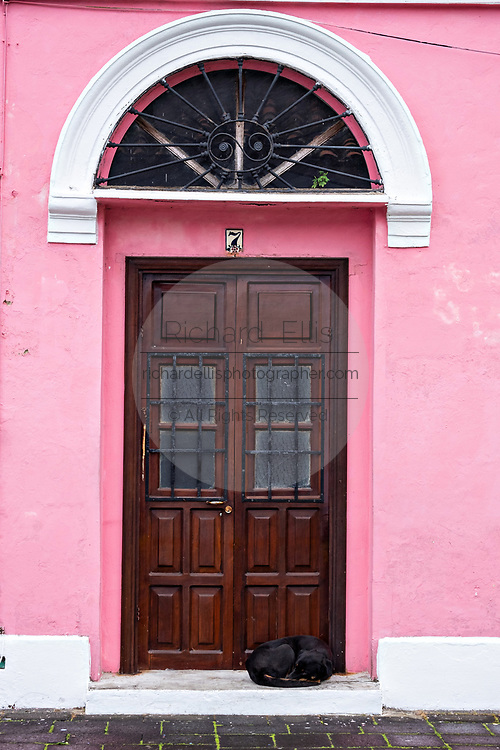 A dog sleeps in the doorway of a colorful colonnade style building in Tlacotalpan, Veracruz, Mexico. The tiny town is painted a riot of colors and features well preserved colonial Caribbean architectural style dating from the mid-16th-century.