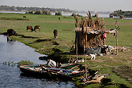 Egypt . Nile river valley -the daily life on the Nile river.   cruise on a Sandal  boat, traditional boat transformed in a cruise boat) on the nile river near Daraw  Egypt    /  vie quotidienne sur le Nil.     Egypte croisiere sur un Sandal, Bateau de croisiere  tradionnel (transporteur de pierre)  pres de Daraw