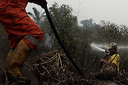 INDONESIA, Palembang : 28 September 2015 Indonesian fire fighters extinguish fires on peatland and fields in the Ogan Ilir district, South Sumatra, Indonesia. Forest fires in Sumatra and Borneo have caused widespread haze in Southeast Asia. Pic by Hairul Akbar / Story Picture Agency