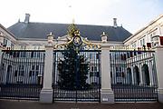 De Kerstboom voor Paleis Noordeinde