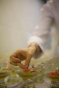 Belo Horizonte, 28 de janeiro de 2009...Festival Gastronomico Sabor e Saber, na foto detalhe de flores comestiveis...The Gastronomic Festival Sabor e Saber, in this photo edible flowers...Foto: BRUNO MAGALHAES / NITRO