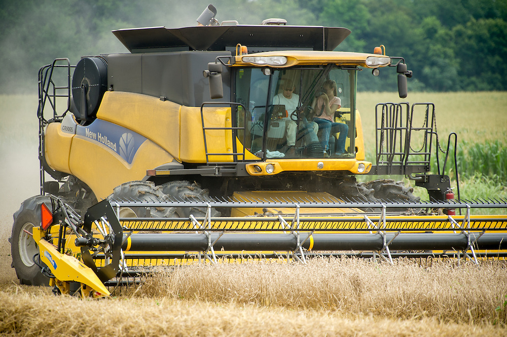 Wheat harvest with photographer in combine<br /> Centerville MD