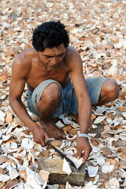 Men processing coconut before it is dried to produce copra, Sausu Peore, Central Sulawesi, Sulawesi, Indonesia.