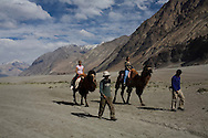 Tourists ride Bactrian camels across the desert sand dunes in Hundar. The camels are a legacy left behind by the caravans plying the spice and textile trade routes between Punjab and China. Scenery of Nubra Valley, Ladakh on 4th June 2009. The valley of Ladakh is located in the Indian Himalayas, in the northern state of Jammu and Kashmir. Photo by Suzanne Lee