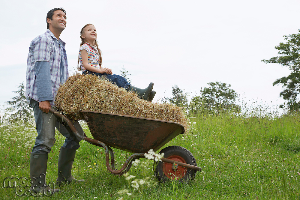 Father pushing daughter (5-6) on wheelbarrow in field