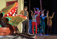 Little Shop of Horrors by Belmont High School Drama.