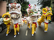 12 OCTOBER 2015 - BANGKOK, THAILAND: Chinese lion dancers perform on Yaowarat Road on the first day of the Vegetarian Festival in Bangkok's Chinatown. The Vegetarian Festival is celebrated throughout Thailand. It is the Thai version of the The Nine Emperor Gods Festival, a nine-day Taoist celebration beginning on the eve of 9th lunar month of the Chinese calendar. During a period of nine days, those who are participating in the festival dress all in white and abstain from eating meat, poultry, seafood, and dairy products. Vendors and proprietors of restaurants indicate that vegetarian food is for sale by putting a yellow flag out with Thai characters for meatless written on it in red.      PHOTO BY JACK KURTZ