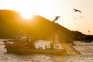 A commercial fishing seiner brings in its net at sunset during the Sitka Sound herring sac roe fishery in Alaska.