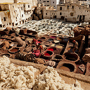 Fez Tannery Workers
