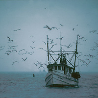 Nautical Fishing Boats and Scenes