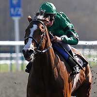 Dark Stranger and William Buick winning the 1.50 race