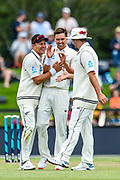 Neil Wagner of the Black Caps celebrates Trent Boult's 5th wicket with Colin De Grandhomme of the Black Caps during Day2 of the cricket test match, Black Caps v Sri Lanka, Hagley Oval, Christchurch, New Zealand, 27th December 2018.Copyright photo: John Davidson / www.photosport.nz