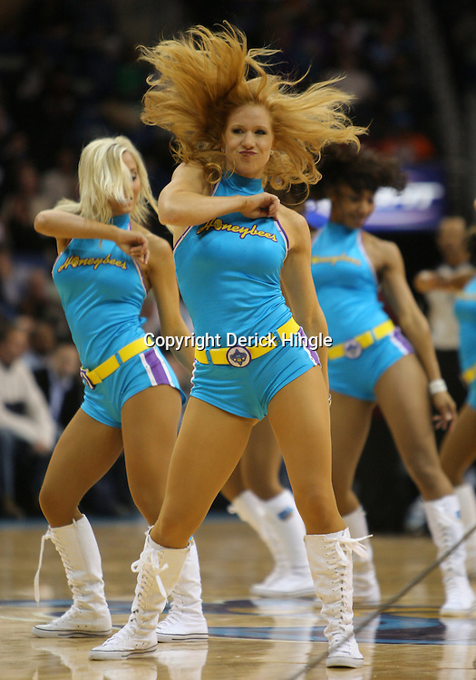 Jan 02, 2010; New Orleans, LA, USA; New Orleans Hornets Honeybees dancers perform during the second half of a game against the Houston Rockets at the New Orleans Arena. The Hornets defeated the Rockets 99-95.  Mandatory Credit: Derick E. Hingle-US PRESSWIRE