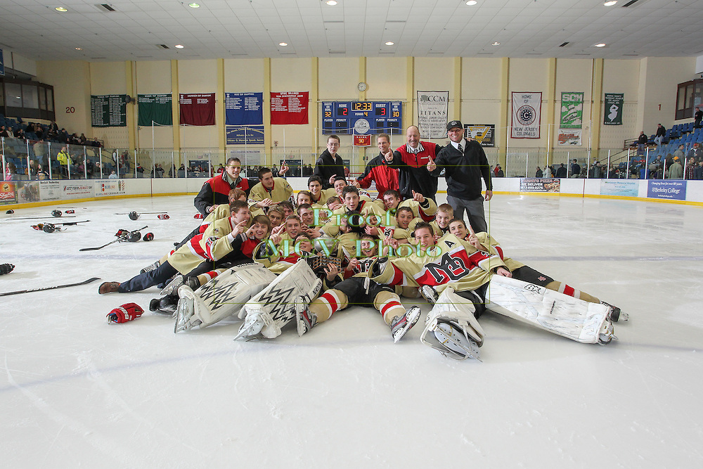 02-22-14 Ice Hockey: Haas Cup - Mt Olive v Madison