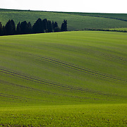 April 2011 - Wiltshire - Tne Great Stones Way with words by Chris Hatherill and Pics by Steve Morgan - walking up from Pewsey Vale on towards Salisbury Plain
