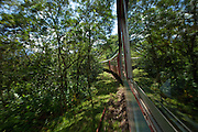 Serra Verde Express train through the Atlantic rainforest from Curitiba to Paranagua in Brazil
