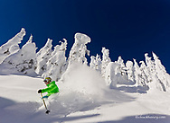 Eleven year old Parkin Costain skis untracked powder on a sunny day at Whitefish Mountain Resort in Montana model released