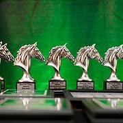 Mt. Ida College Athletic Awards 2017
