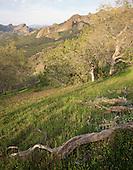 Large Format Photos, Pinnacles National Park