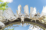 The Gateway to Fairbanks, Moose Antler Arch in Griffin Park downtown Fairbanks, Alaska. The arch is made up of more than 100 moose and caribou antlers collected from all over Interior Alaska and is the world's farthest north antler arch.