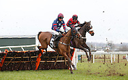 Plumpton, UK, 16th January 2017<br /> Tom O'Brien riding Up The Navan Road and  The Caller riden by Andrew Tinker clear an early fence during The Timeform App Novices' Hurdle at Plumpton Racecourse.<br /> &copy; Telephoto Images / Alamy Live News