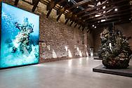 "Venezia - Punta della Dogana . La mostra di Damien Hirst: ""Tresaures from the Wreck of Unbelievable. ""the Monk"""