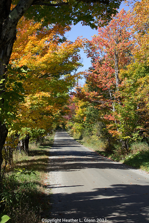 Early Fall color in Stannard, Vermont