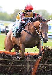 Bedrock ridden by harry Skelton jumps the last  fence in the John Greasley Sportsfield Contractors Novices' Hurdle