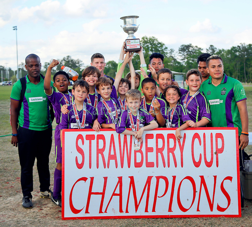 10 April 2016. Hammond, Louisiana.<br /> South Tangi Youth Soccer Association (STYSA), Chappapeela Sports Complex, 30th Annual Strawberry Cup,  <br /> New Orleans Jesters Youth Academy U10 team Green 3 play the Cup Final against LA Fire PAC U9E Red. With the score 1-1 at full time, the teams went to an incredibly tense penalty shoot out. At one point it looked as if LA Fire were certain to take the win, but Jesters fought back to secure an incredible 4-3 victory.  <br /> Photo©; Charlie Varley/varleypix.com